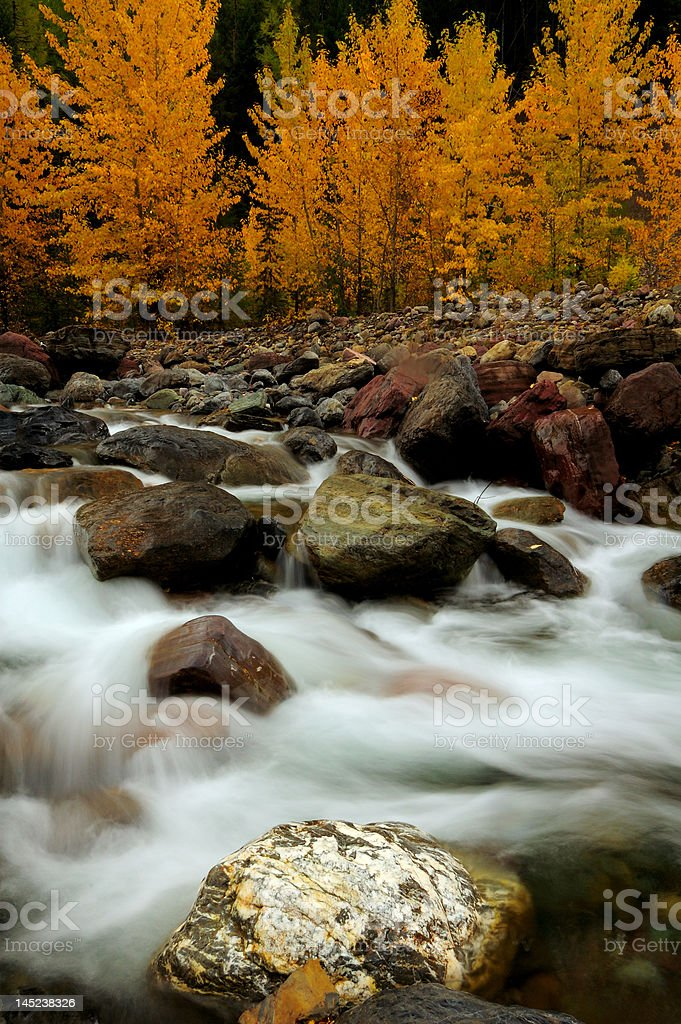 Autumn in Glacier National Park royalty-free stock photo