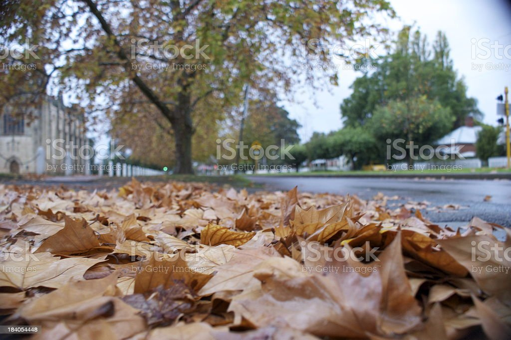 Autumn in Guildford stock photo