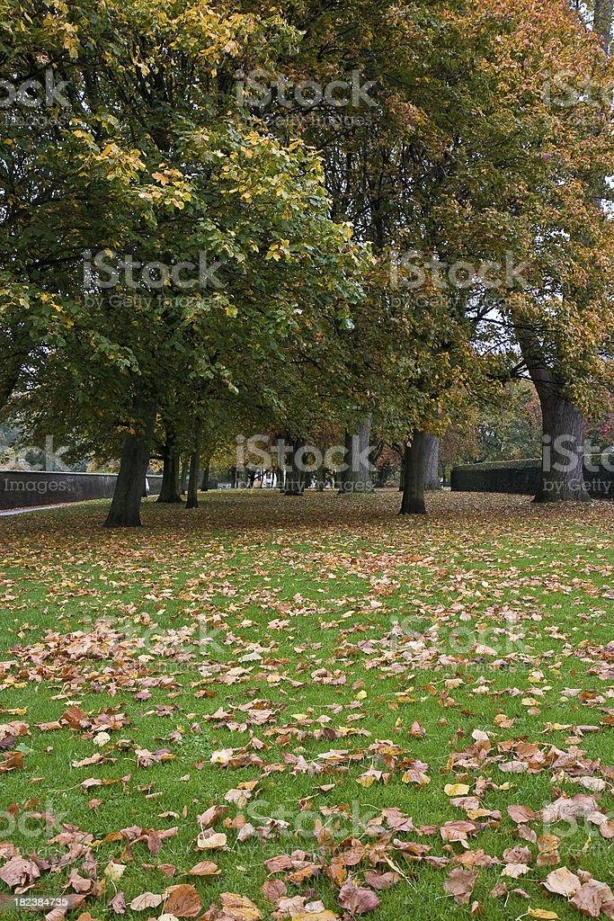 Autumn in Holyrood Park stock photo