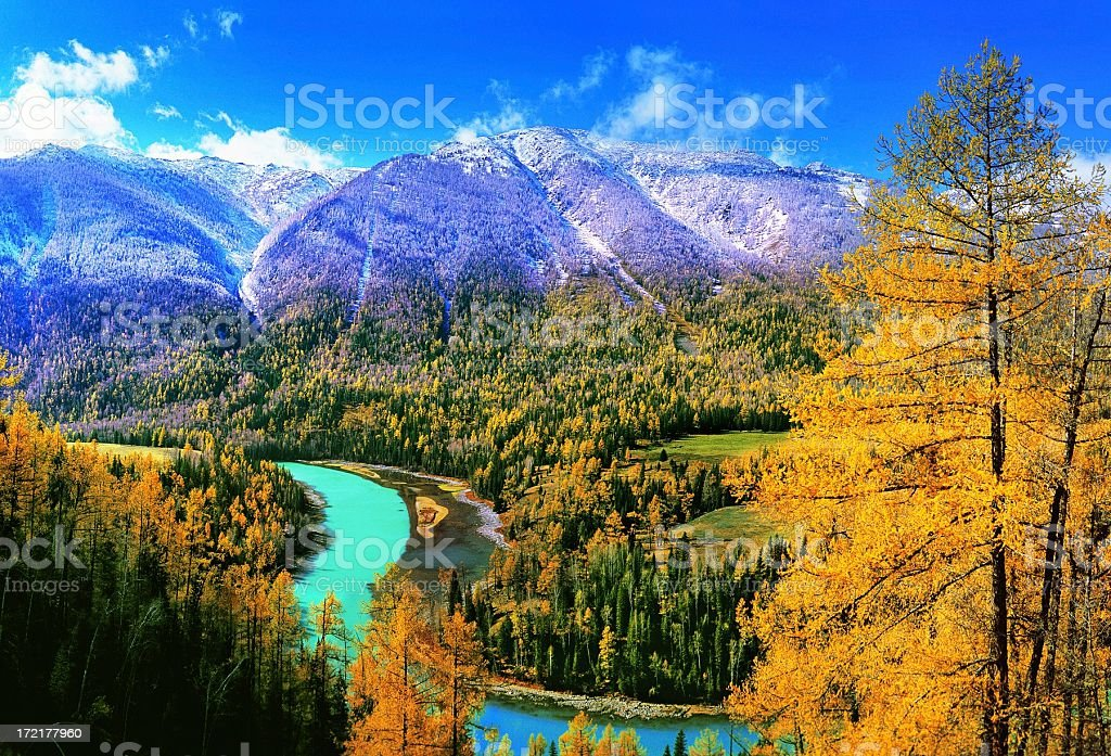 Autumn in Kanas Lake, Xinjiang China royalty-free stock photo