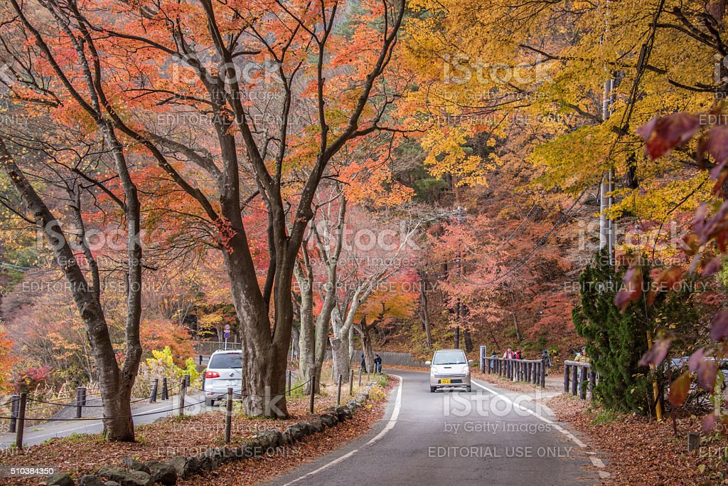 autumn in Kawaguchiko stock photo