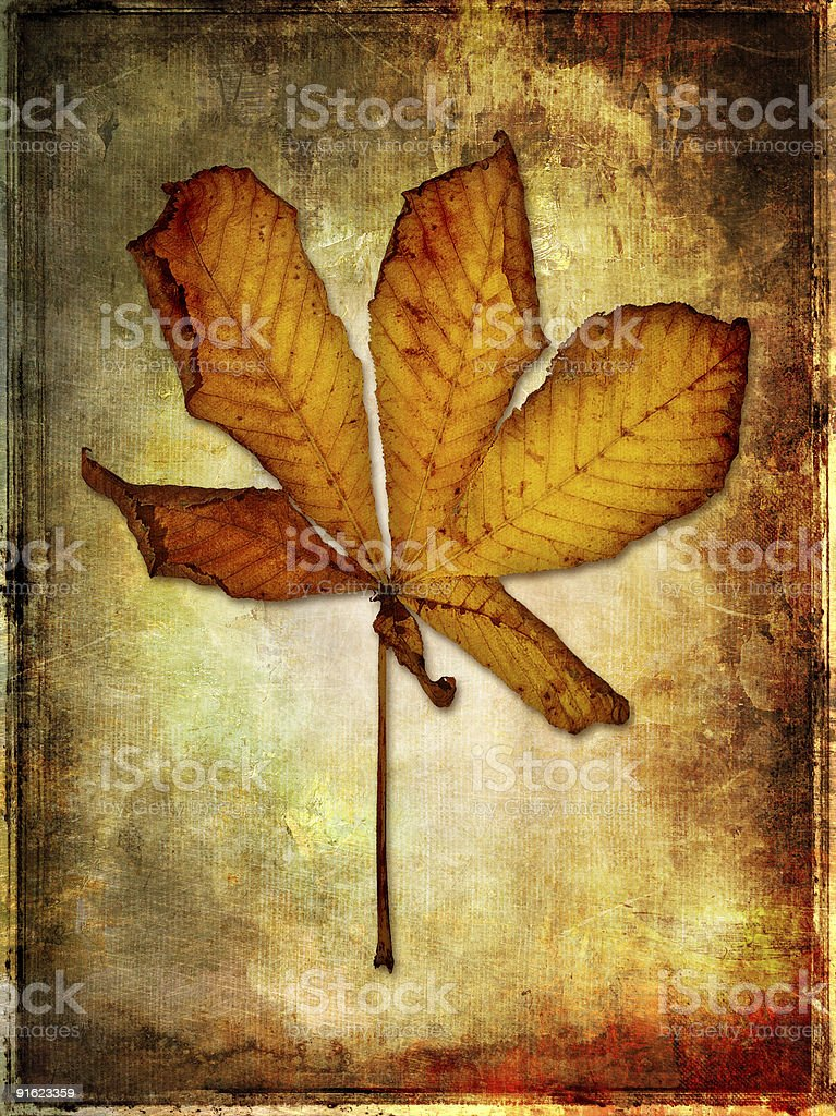 autumn in minimalistic style royalty-free stock photo