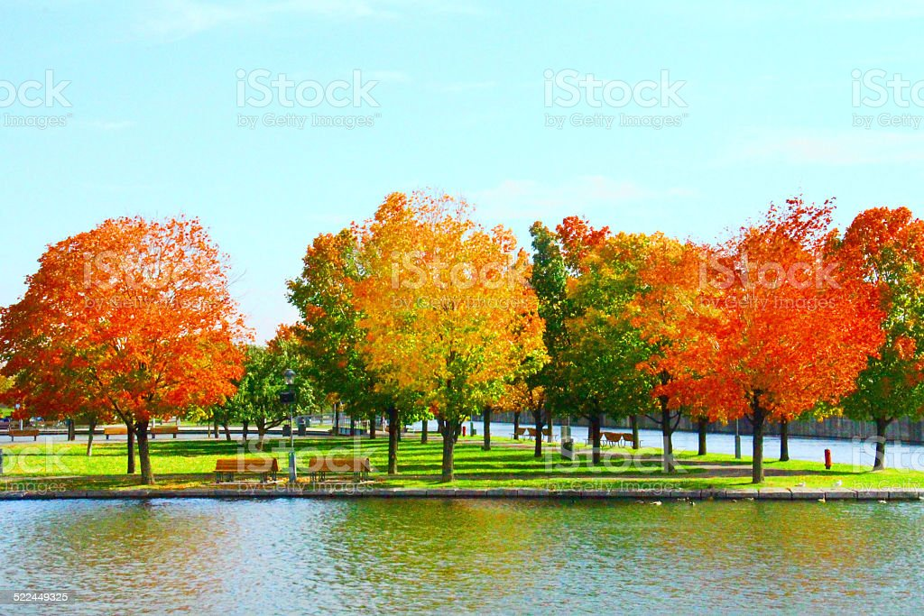 Autumn in Montreal Canada- Stock Image stock photo