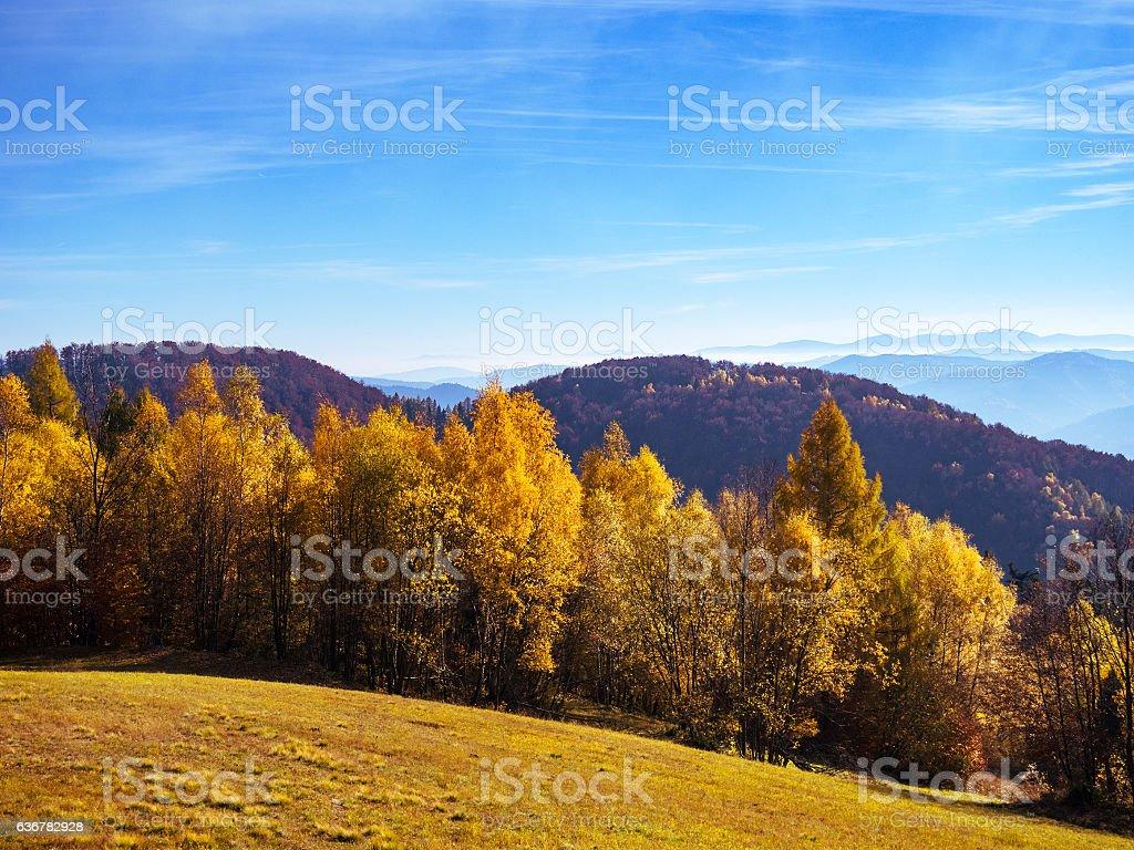 Autumn in mountains. Beskid Sadecki, Poland. stock photo
