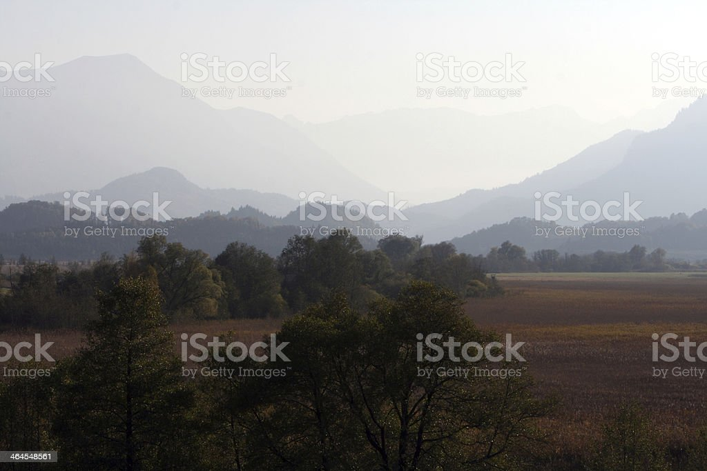 autumn in Murnauer Moos stock photo