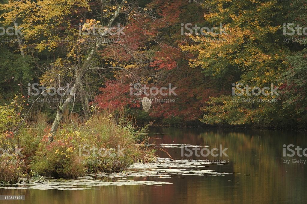 Autumn in New England royalty-free stock photo
