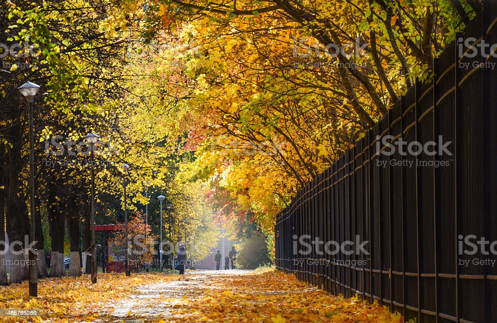 Autumn in Obninsk, Russia stock photo