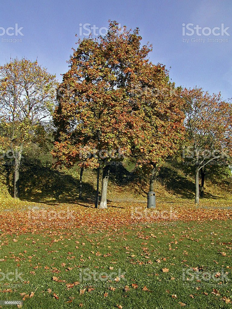 Autumn in Oslo 2 royalty-free stock photo