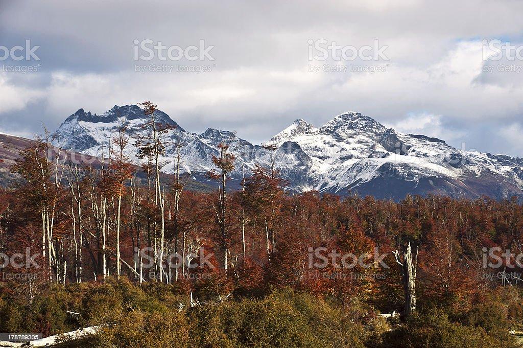 Autumn in Patagonia. Cordillera Darwin, Tierra del Fuego royalty-free stock photo