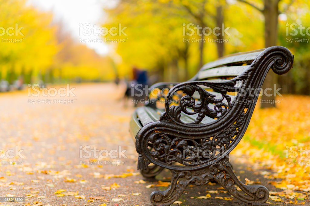 Autumn in Regents Park stock photo
