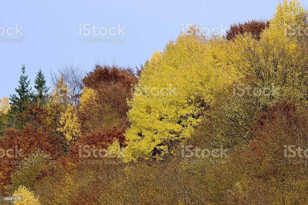 Autumn In Romania royalty-free stock photo