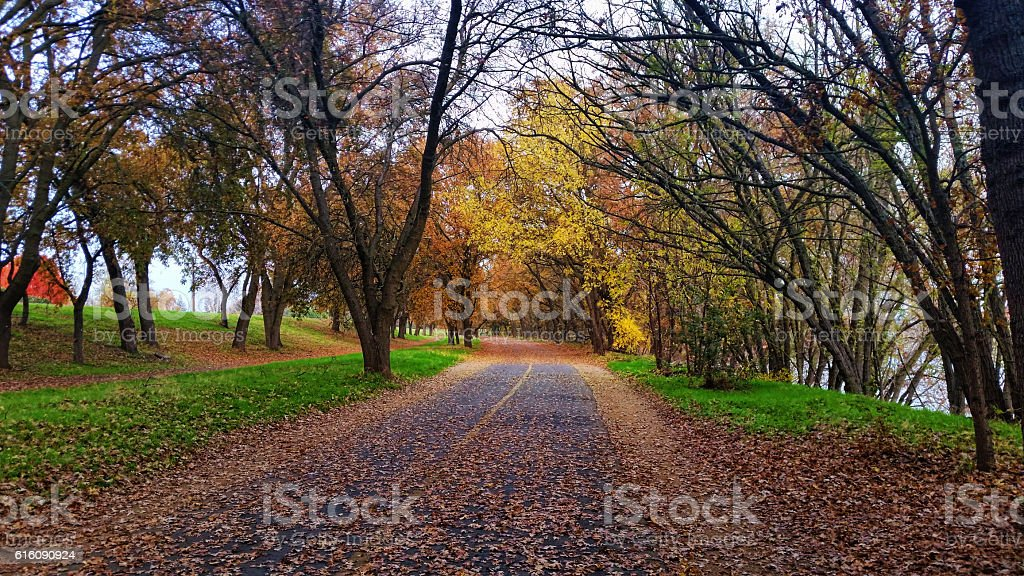 Autumn in Sacramento, California stock photo