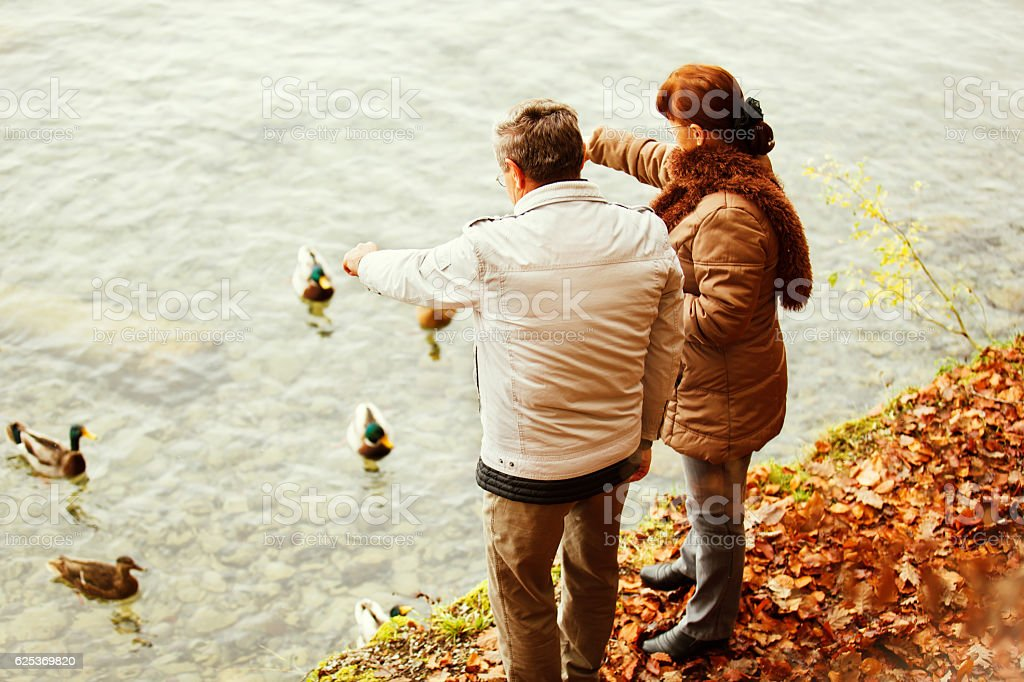 Autumn in Small Swiss Village, Spiez. Senior Couple. stock photo