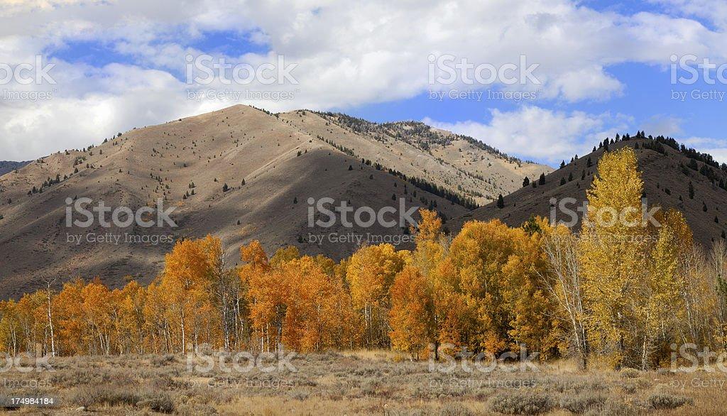 Autumn in Sun Valley stock photo