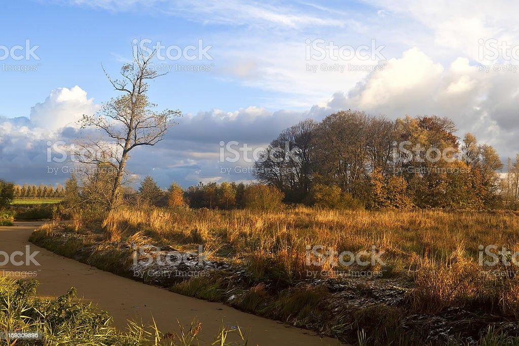 autumn in sunrise light royalty-free stock photo