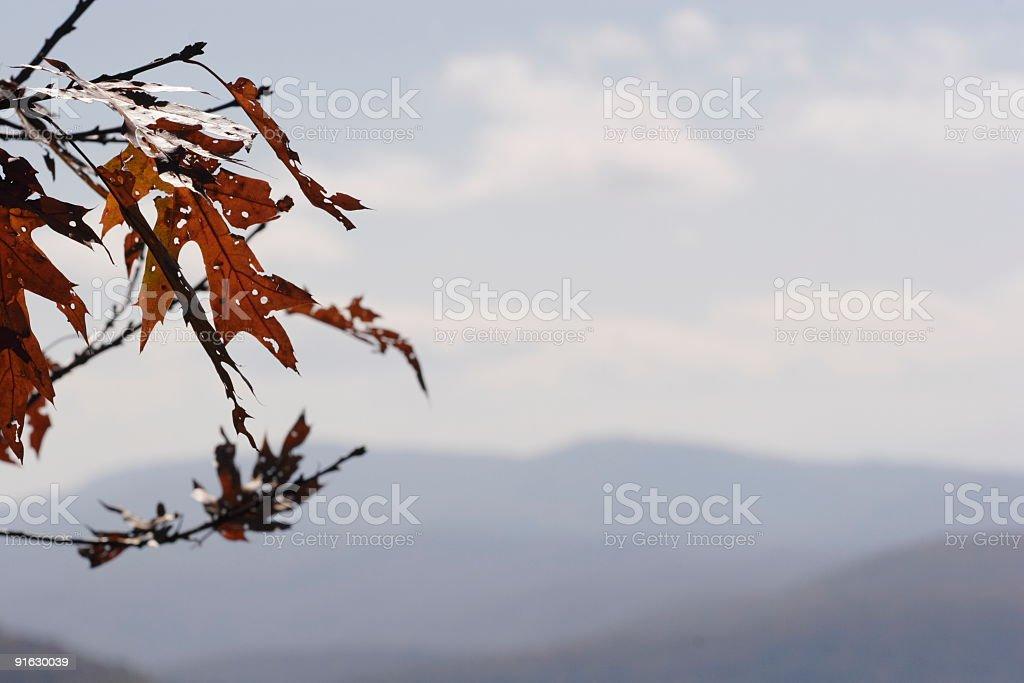 Autumn in the Blue Ridge Mountains royalty-free stock photo