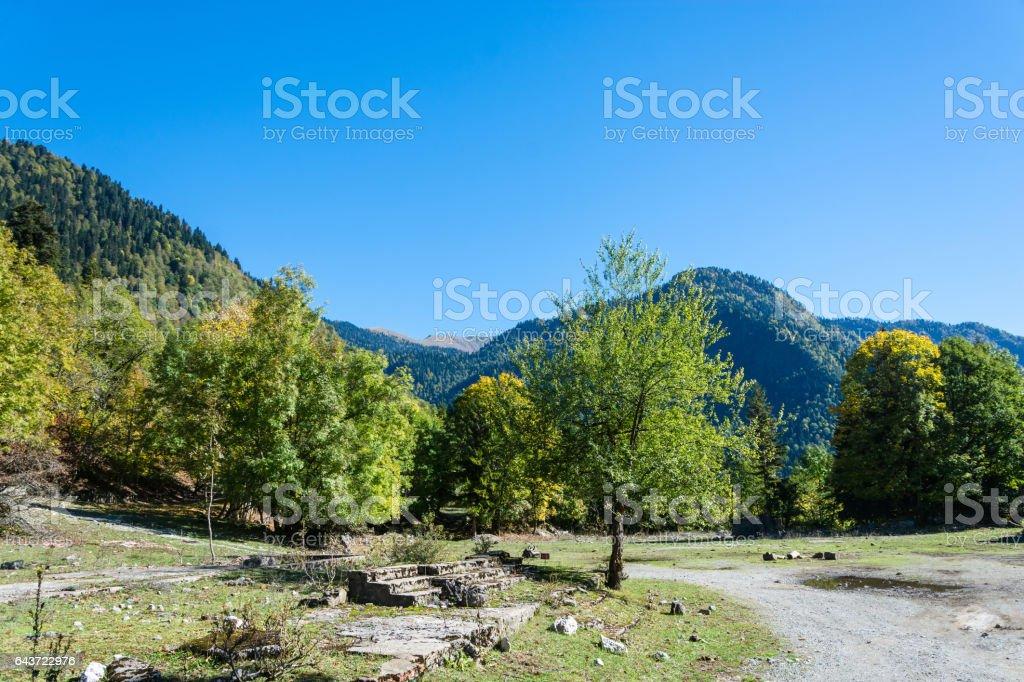 Autumn in the Caucasus mountains, Abkhazia. stock photo