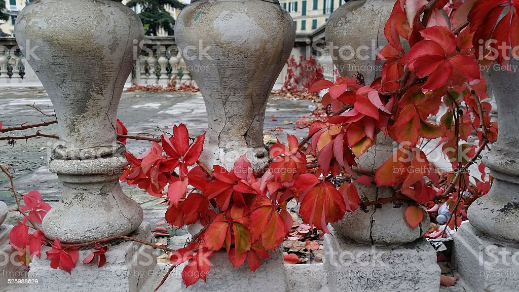 Autumn in the city royalty-free stock photo