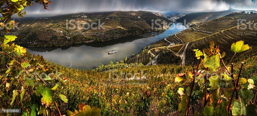 Autumn in the Douro Valley stock photo