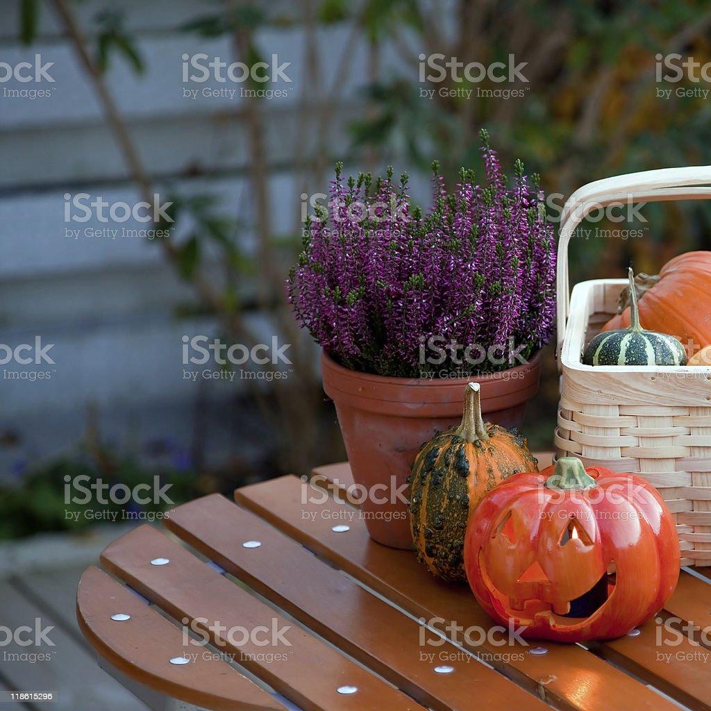 Autumn in the garden royalty-free stock photo