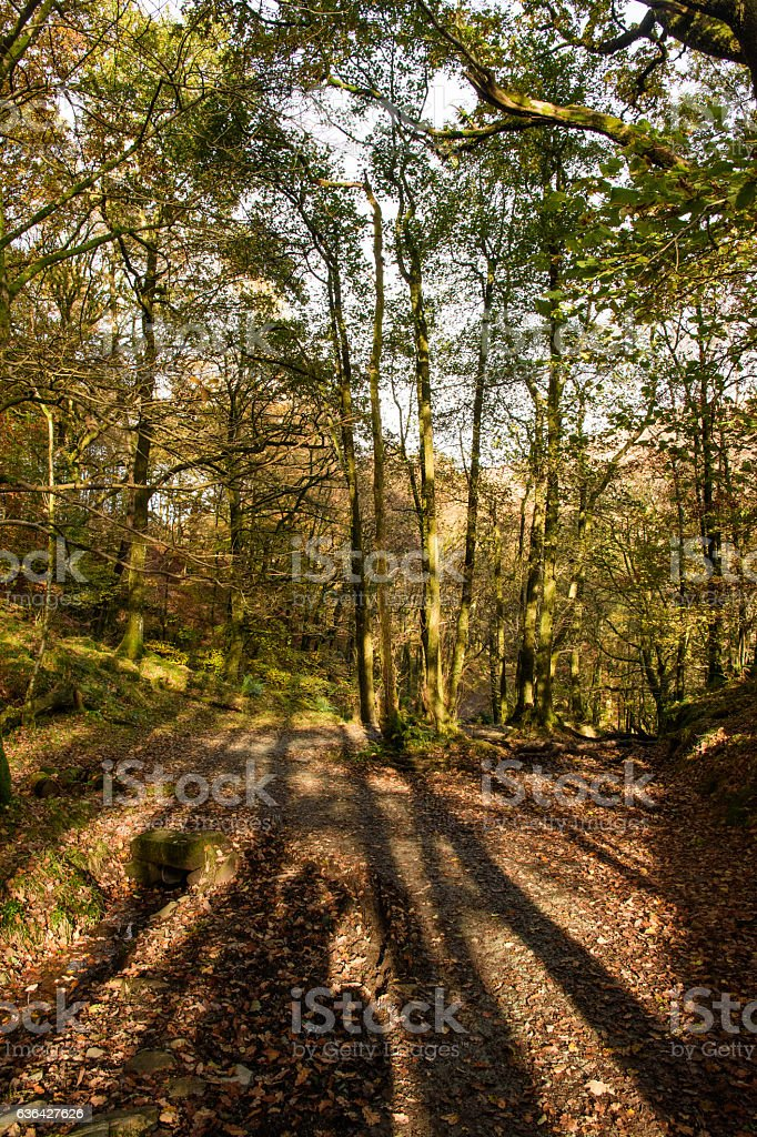 Autumn in the Lake District stock photo