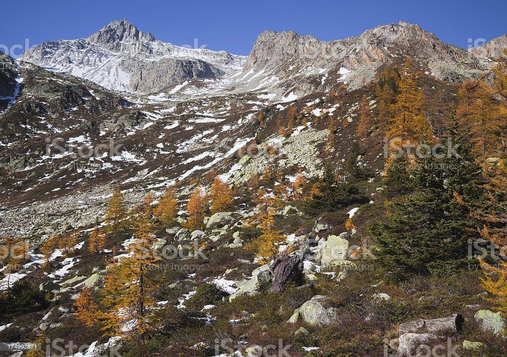 Autumn in the mountain stock photo