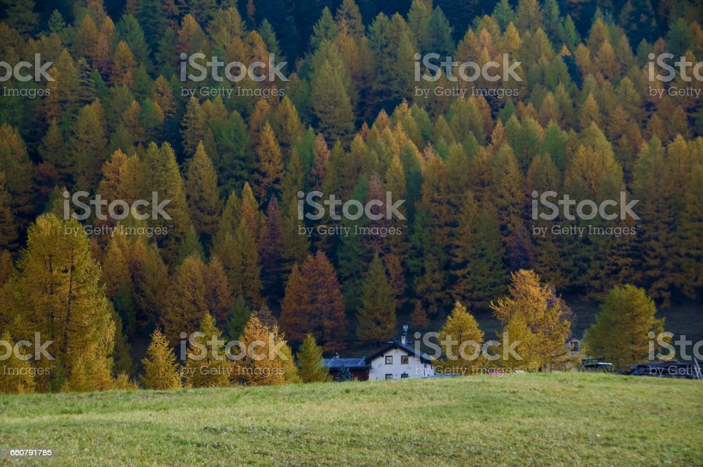 Autunno in montagna - Autumn stock photo