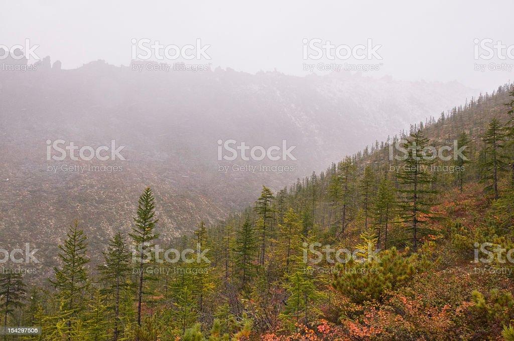 Autumn in the mountains, gray rainy day. stock photo