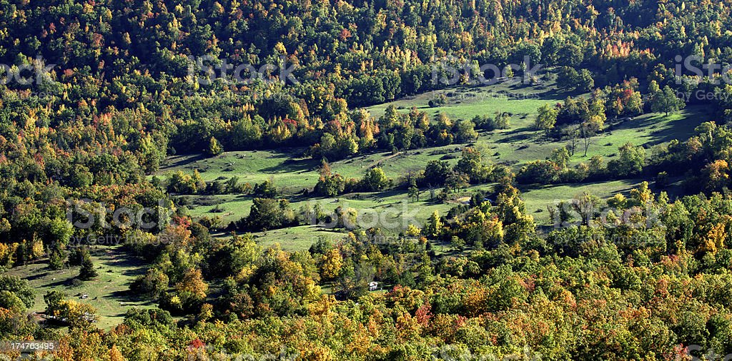 Autumn in the Ozarks royalty-free stock photo
