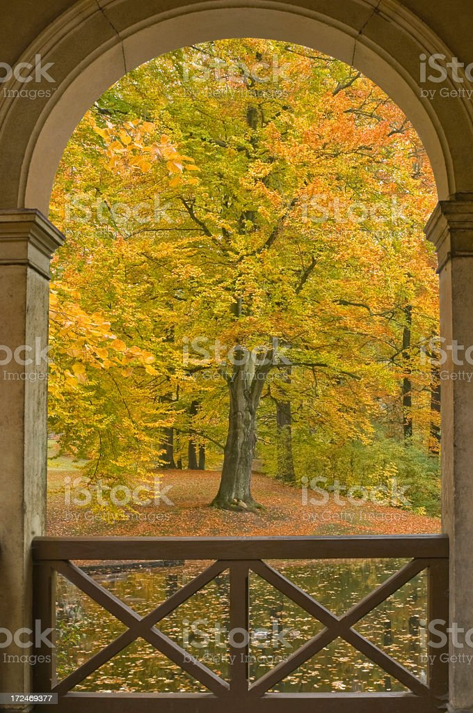 Autumn in the park, view through a portal royalty-free stock photo