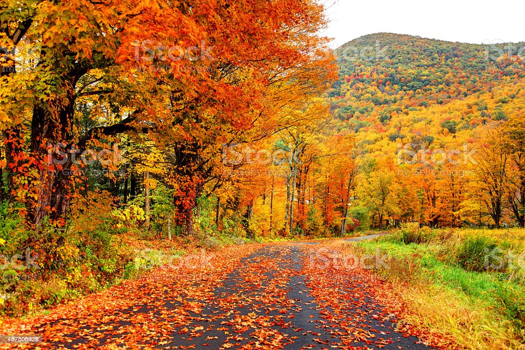 Scenic autumn road in the Pioneer Valley region of Massachusetts