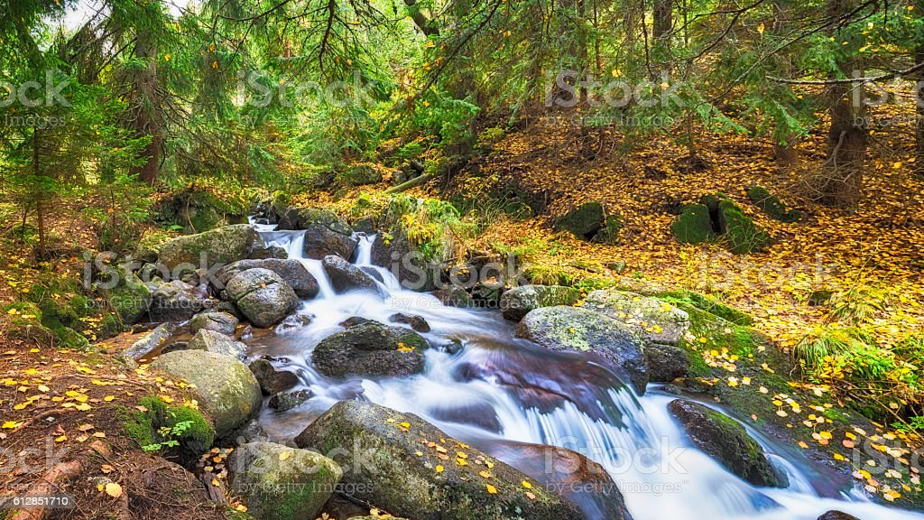 autumn in the river stock photo