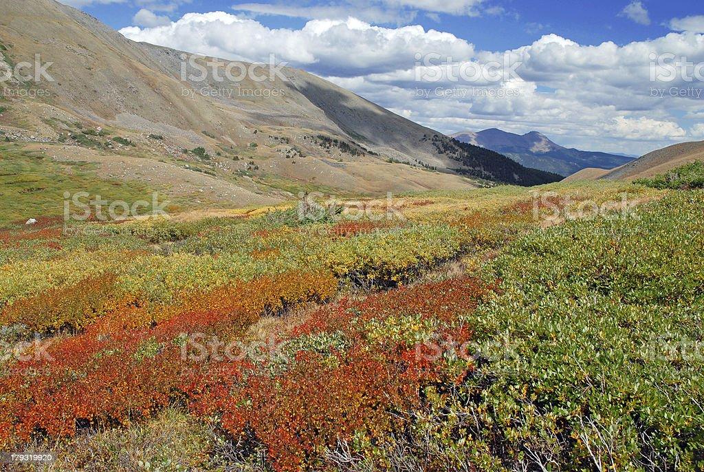 Autumn in the Sawatch Range, Colorado stock photo