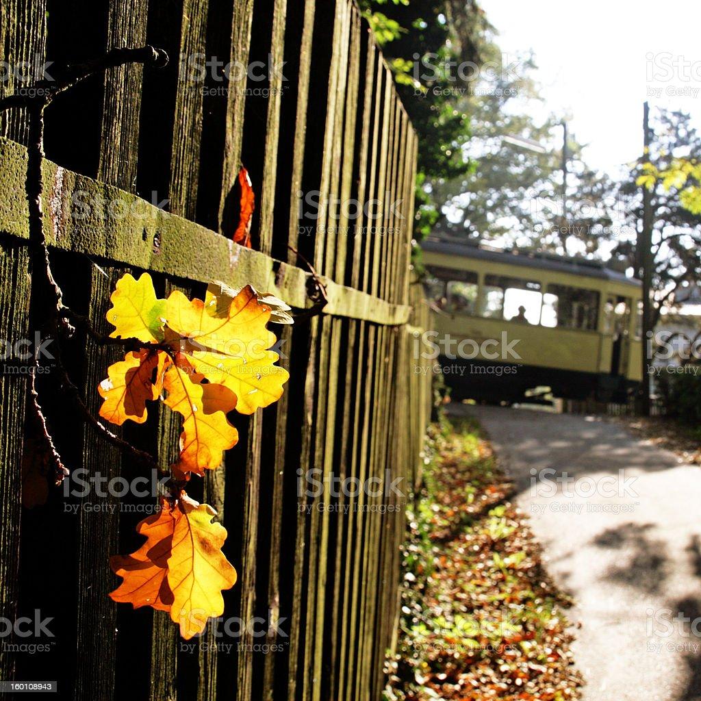 autumn in the suburb stock photo