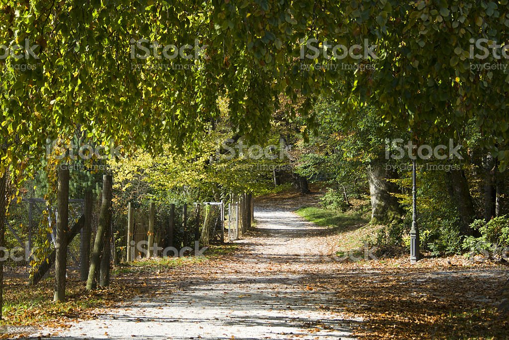 Autumn in the Tivoli park, Ljubljana, Slovenia stock photo