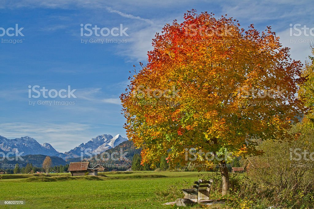 autumn in the Werdenfels stock photo