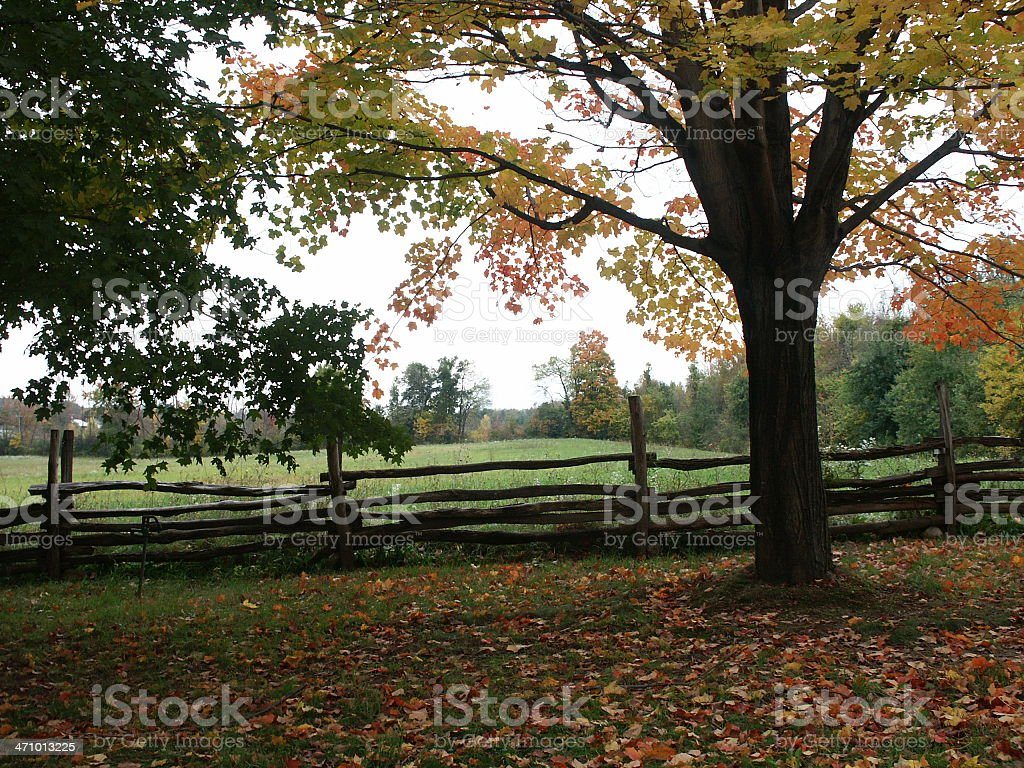 Autumn in Upstate New York royalty-free stock photo