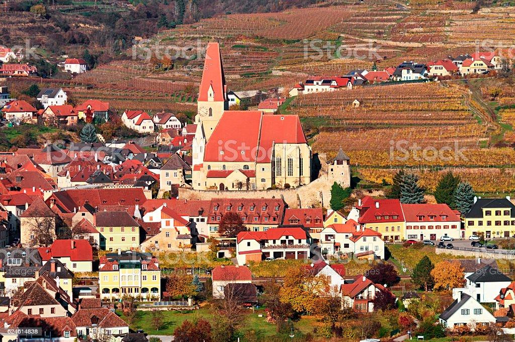 Autumn in Vineyards around Weissenkirchen, Wachau valley, Austria stock photo