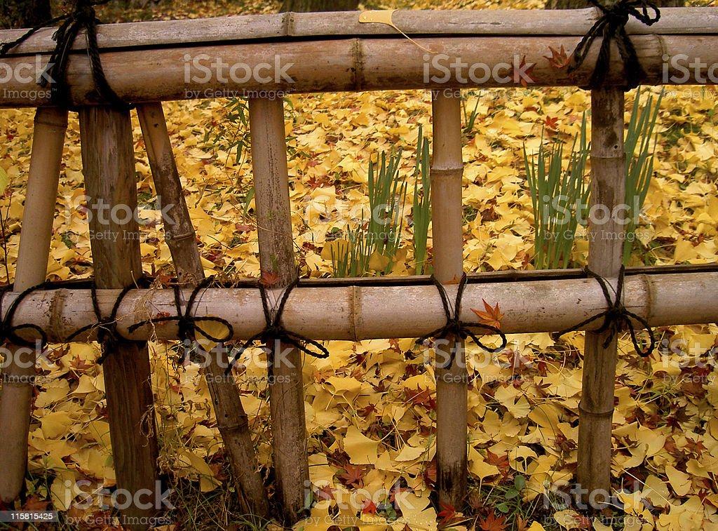 Autumn japanese fence royalty-free stock photo
