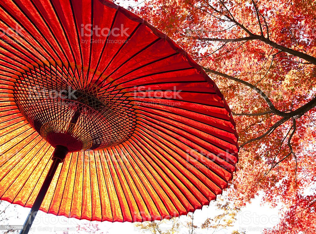 Autumn Japanese Umbrella stock photo