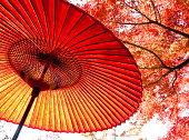 Autumn Japanese Umbrella
