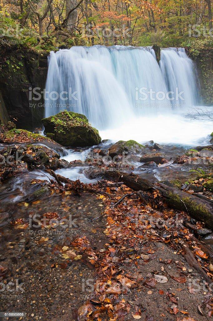 Autumn Japanese Waterfalls stock photo
