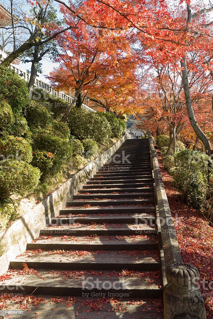 Autumn Kiyomizu temple royalty-free stock photo