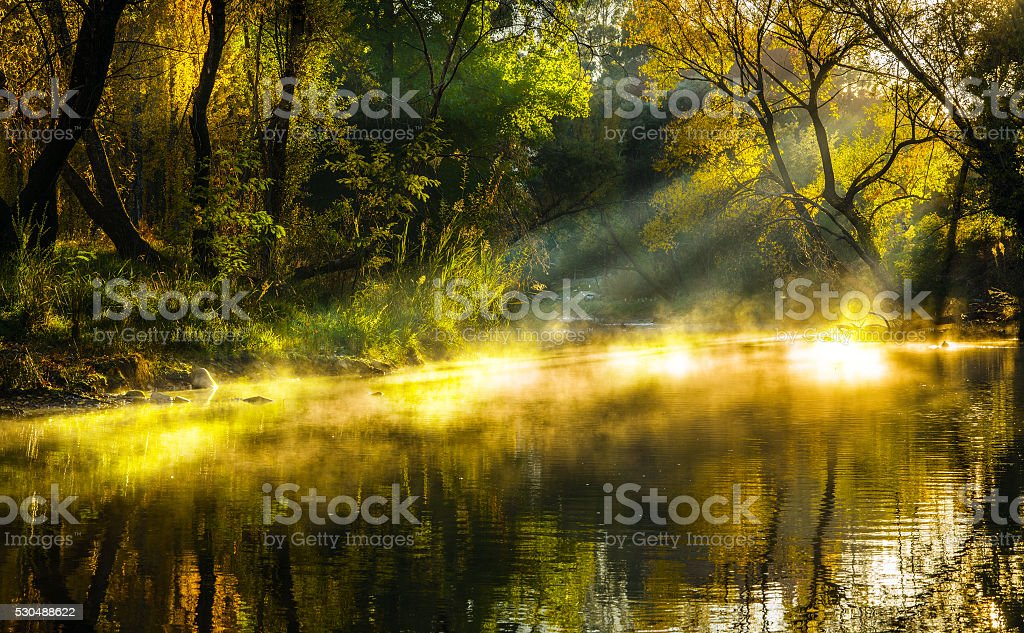 Autumn lake mist stock photo