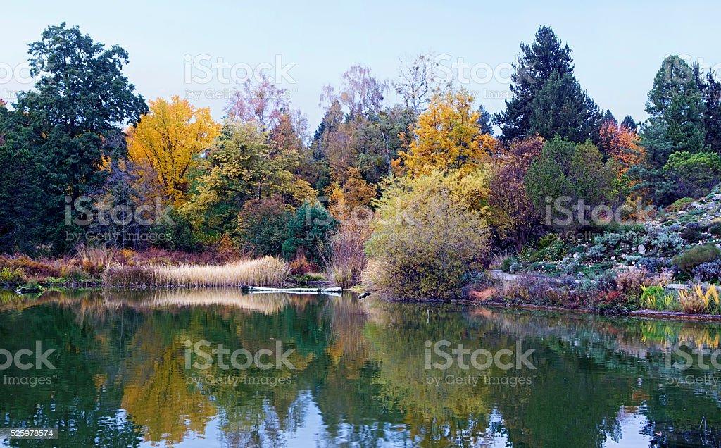 Autumn lake panorama royalty-free stock photo