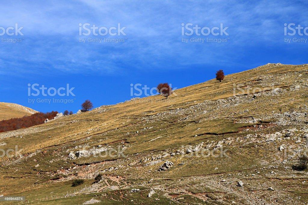 Autumn landscape at Bjelasnica mountain , Bosnia and Herzegovina stock photo