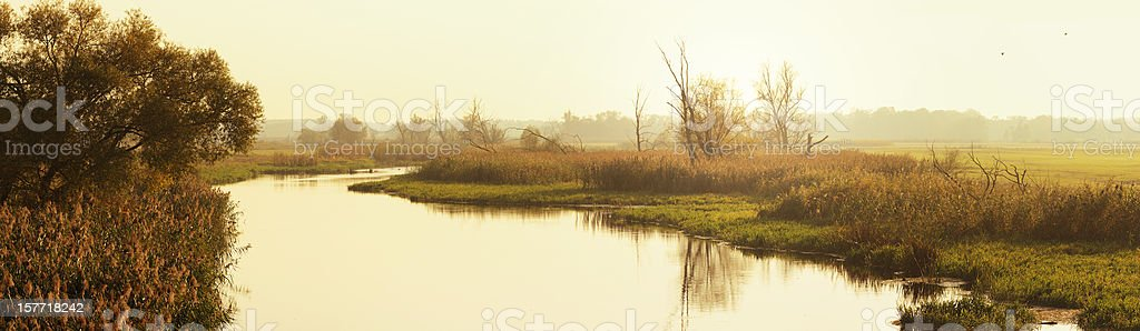 autumn landscape at Havel River (Germany) stock photo