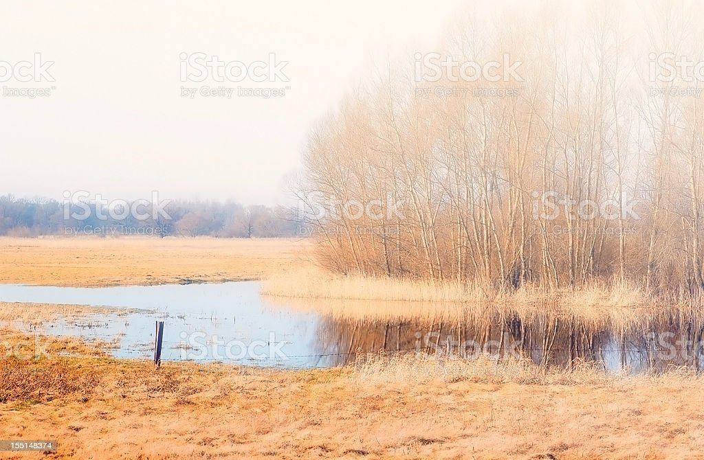autumn landscape at Havel River with meadow (Germany) stock photo