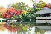 Autumn Landscape at Japanese Garden