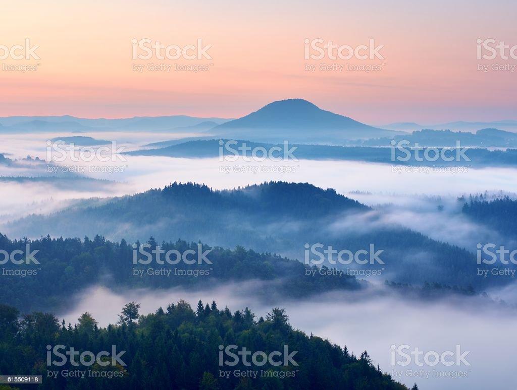 Autumn landscape. Gentle  mist, magnificent autumn creamy fog stock photo